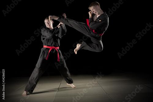 Garden Poster Martial arts kampfsport03