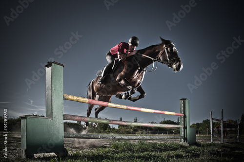 Photo Stands Horseback riding Reiten03