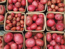 Organic Red Potatoos At Farmers Market.