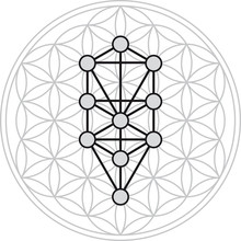 Ten Sephirots Of Kabbalah Fits In Flower Of Life, A Geometrical Figure, Composed Of Multiple Evenly-spaced, Overlapping Circles Forming A Flower-like Pattern. Illustration On White Background.
