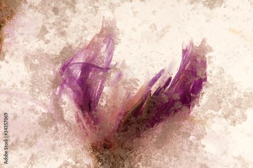 Spoed Foto op Canvas Iris Frozen flowers. blossoms in the ice cube