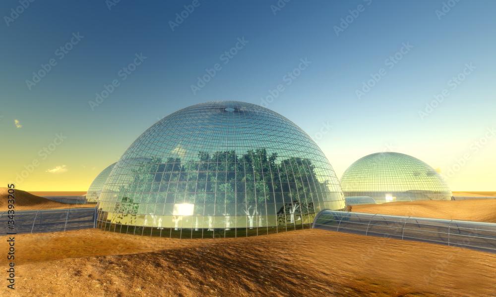 Fototapety, obrazy: bio dome