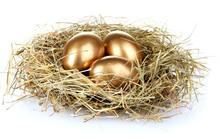 Golden Eggs In Nest Isolated O...