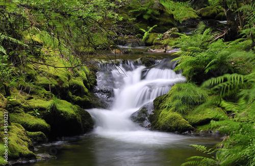 Tranquilidad en el rio muniellos.