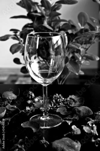 Obraz Pusty kieliszek do czerwonego wina - fototapety do salonu