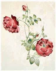 Naklejka Witraże świeckie Greeting card with rose.