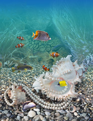 FototapetaUnderwater world