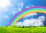 Fototapeta Tęcza - Rainbow in the blue sky over a glade