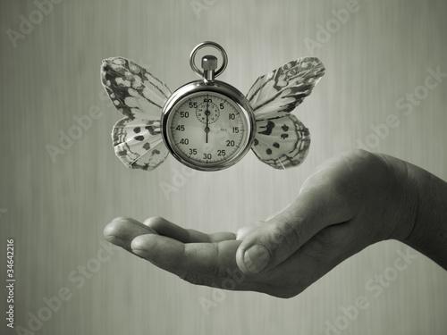 Fotografie, Obraz  die Zeit verfliegt