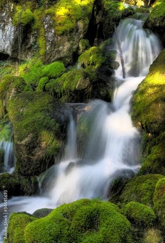 Fototapety, obrazy: rivière de montagne