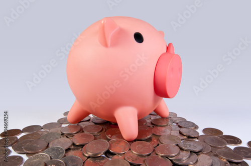 piggy bank on coins Poster