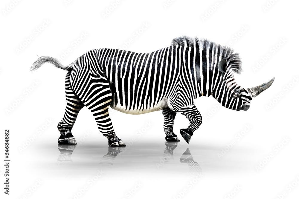 Fototapety, obrazy: Zebra-Horn