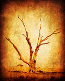 Dry grunge african tree