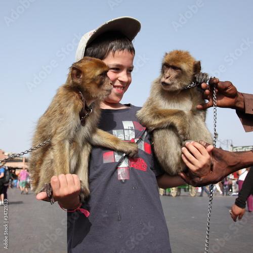Photo  Dresseur de singes à Marrakech