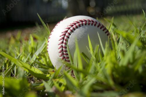 Foto op Canvas Azalea baseball 3