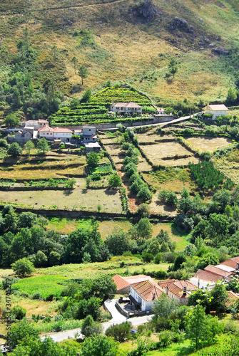 Fotografie, Obraz  Country Homes , Minho region, Portugal