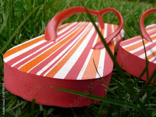 Stickers pour portes Pique-nique Flip-Flops im Gras