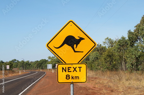 In de dag Australië Attention aux kangourous