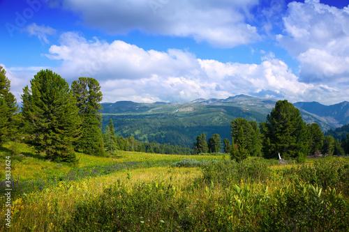 krajobraz-z-gorami-lasow