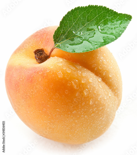 Apricot with leaf on a white background. Canvas Print