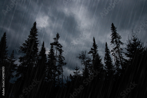 Deurstickers Onweer Rainstorm in forest