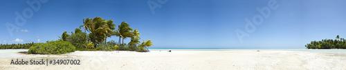 Photographie Palm tree and white sand beach panoramic view