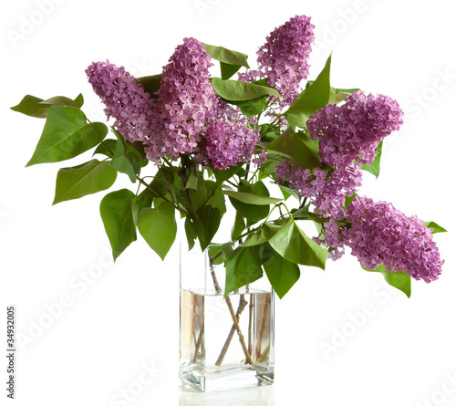 Foto op Canvas Lilac bouquet of Lilac in a vase isolated on a white background.