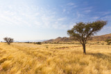 Fototapeta Sawanna - Naukluft Gebirge in Namibia, Afrika