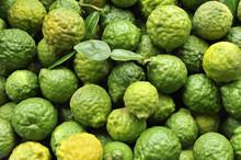 Kaffir Limes