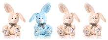 Four Cute Rabbits Isolated On ...