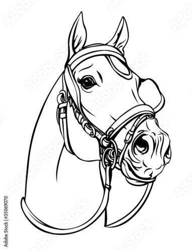 glowa-konia-ilustracja-wektorowa