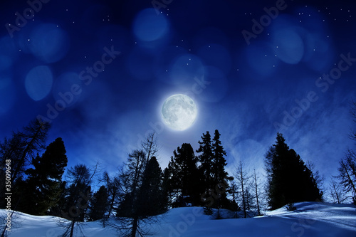 Foto op Canvas Nacht beautiful winter night