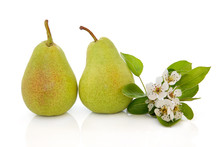 Pear Fruit And Flower Blossom