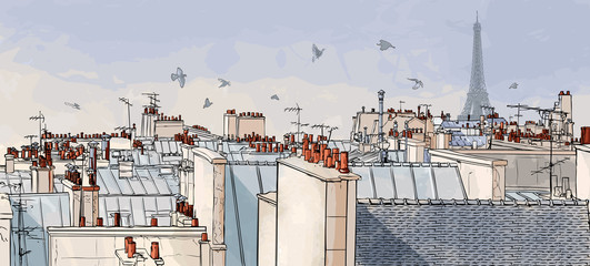 Fototapeta France - Paris roofs