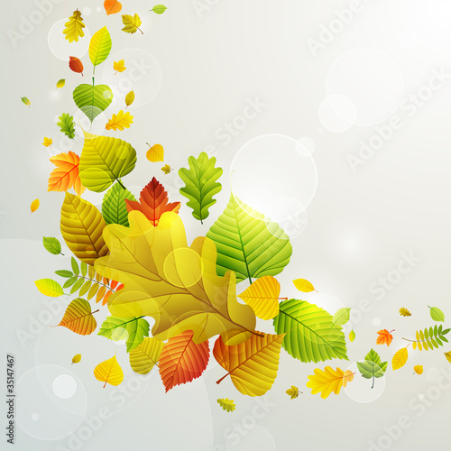 Recess Fitting Graphic Prints Autumn background