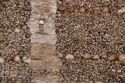 Papel de parede parede de ossos