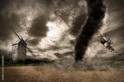 Fotografie, Obraz  Large tornado over a wind mill