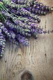Fototapeta Lavender - Fresh lavender