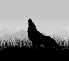 The Wolf Howls In Mountains In...