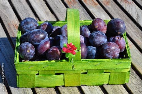 Fototapeta Zwetschgen, Obst, Herbst obraz na płótnie