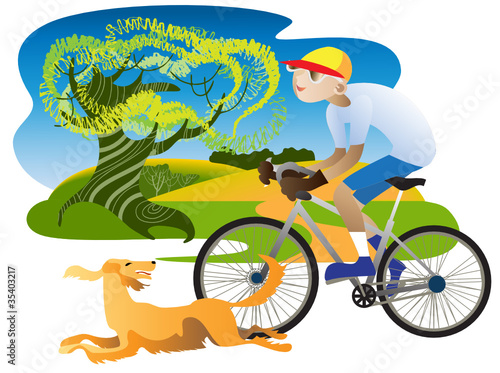 Poster Dogs Irish Setter and cyclist