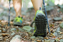 Woman Exercising In Forest, Nordic Walking