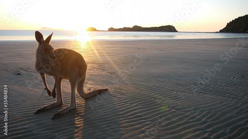 Guten Morgen Australien