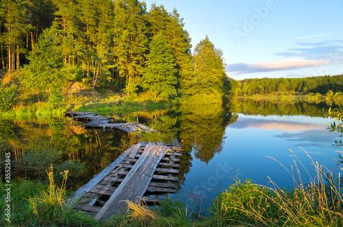 Fototapeta las las-na-skraju-jeziora