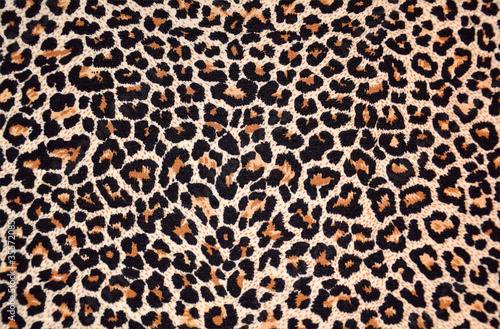 Foto auf Leinwand Leopard abstract texture of leopard fur (skin)