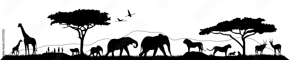 Fototapety, obrazy: Savannen Silhouette Landschaft Tiere