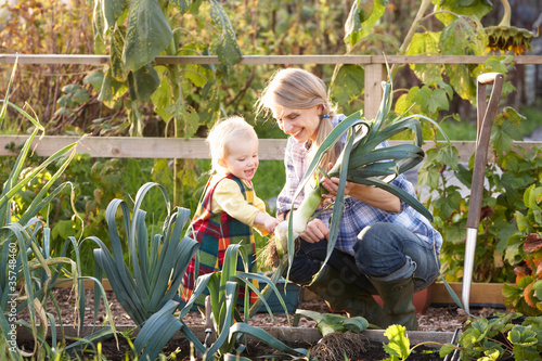 Woman working on allotment with child Canvas Print