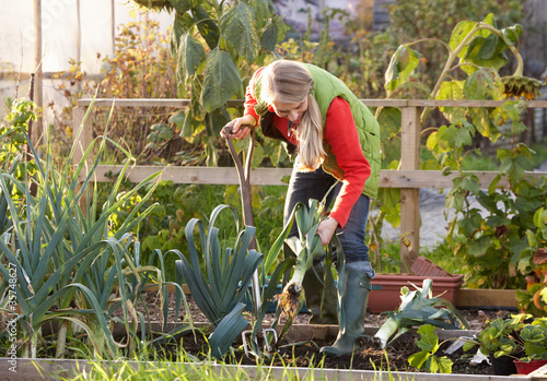 Photo Woman working on allotment
