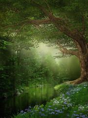Obraz na Szkle Woda Krople Rzeka w zielonym lesie
