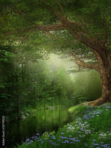 Rzeka w zielonym lesie - 35749233